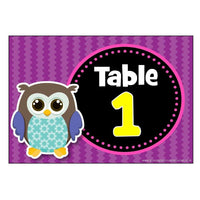 Numbered Table Signs - Owl Theme:Primary Classroom Resources