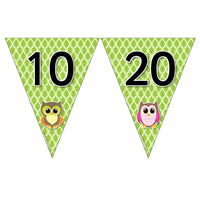 Owl Number Bunting - Counting in 10s and 100s:Primary Classroom Resources
