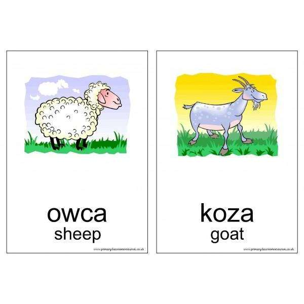 Polish Vocabulary Cards - Animals:Primary Classroom Resources