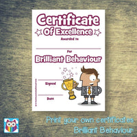 Print Your Own Brilliant Behaviour Certificate:Primary Classroom Resources