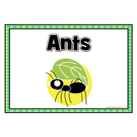 Rainforest Themed Table/Group Signs:Primary Classroom Resources