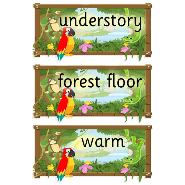 Rainforest Themed Vocabulary Cards