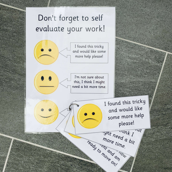 Self Evaluation Pack - Faces:Primary Classroom Resources