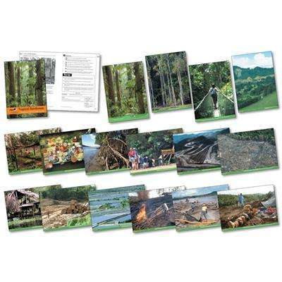 Tropical Rainforests Photo pack & Activity Book:Primary Classroom Resources