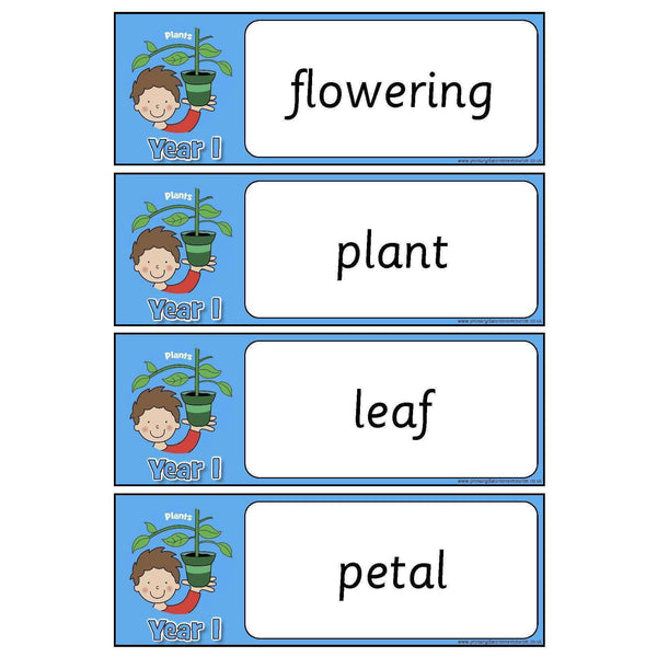 Year 1 Science Vocabulary Pack