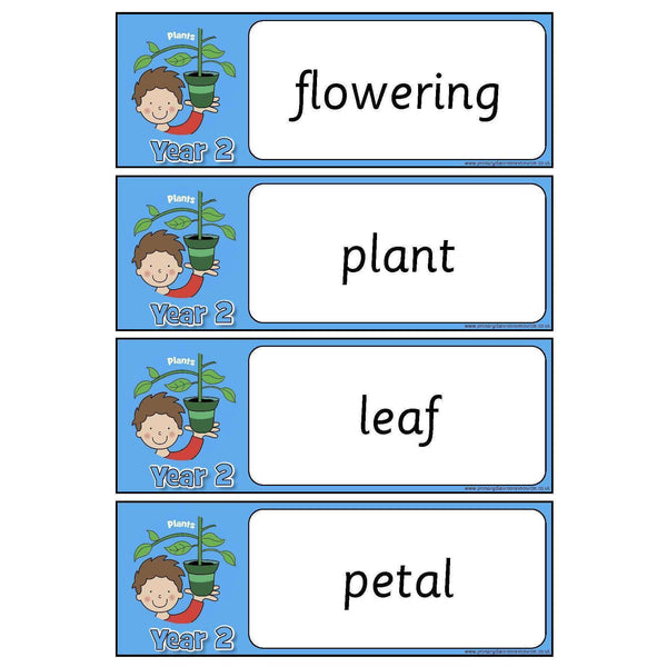 Year 2 Science Vocabulary - Plants