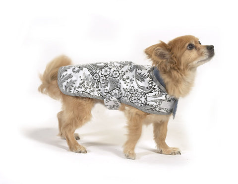 Freckled Sage Oilcloth Doggie Raincoat Toile Black Model