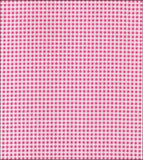 Freckled Sage Oilcloth Swatch Pink Gingham