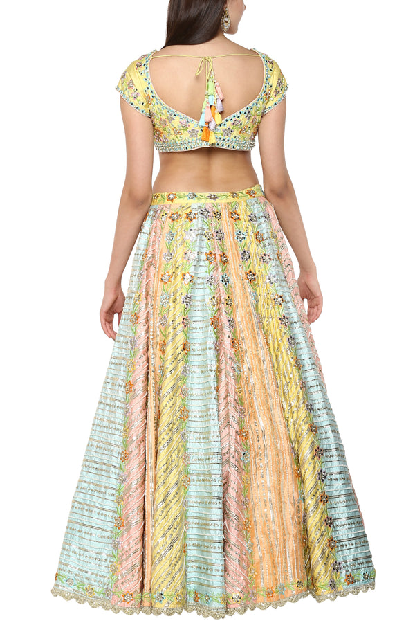 Multicolor Embroidered Lehenga Set