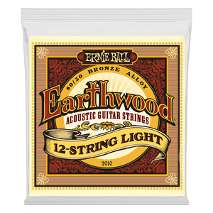 Ernie Ball Earthwood 12 String Light