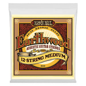 Ernie Ball Earthwood 12 String Medium