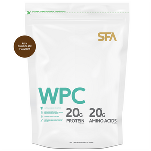 Whey Protein Concentrate WPC Protein Chocolate Protein Powder