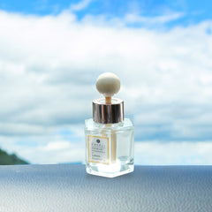 Car Mini Wood Ball Diffuser 1.7 Oz (50 ml)