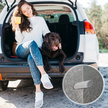 Load image into Gallery viewer, Elevate Essentials Pet Hair Stone for Car