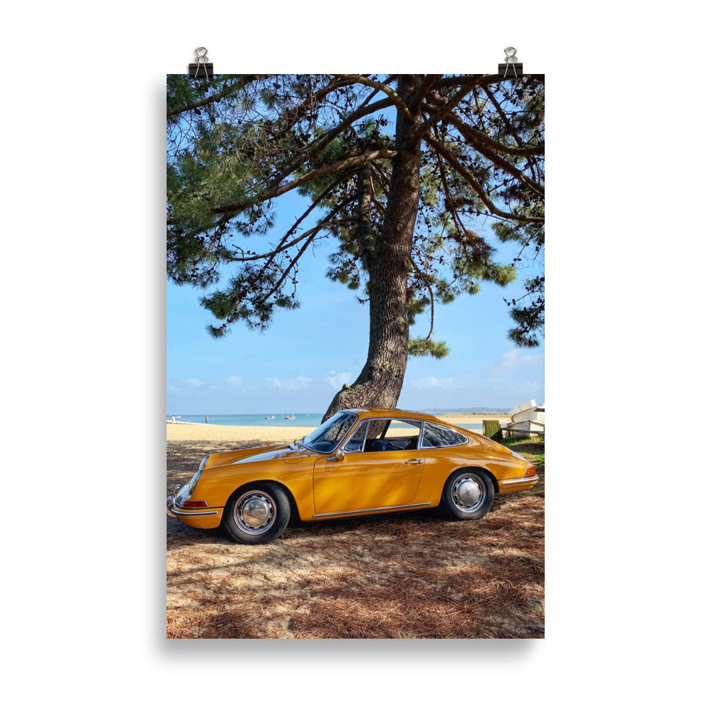 Poster Beard Motors Beach tree - beardmotors