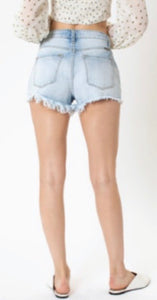 Demi Distressed With Colored Stitching Shorts