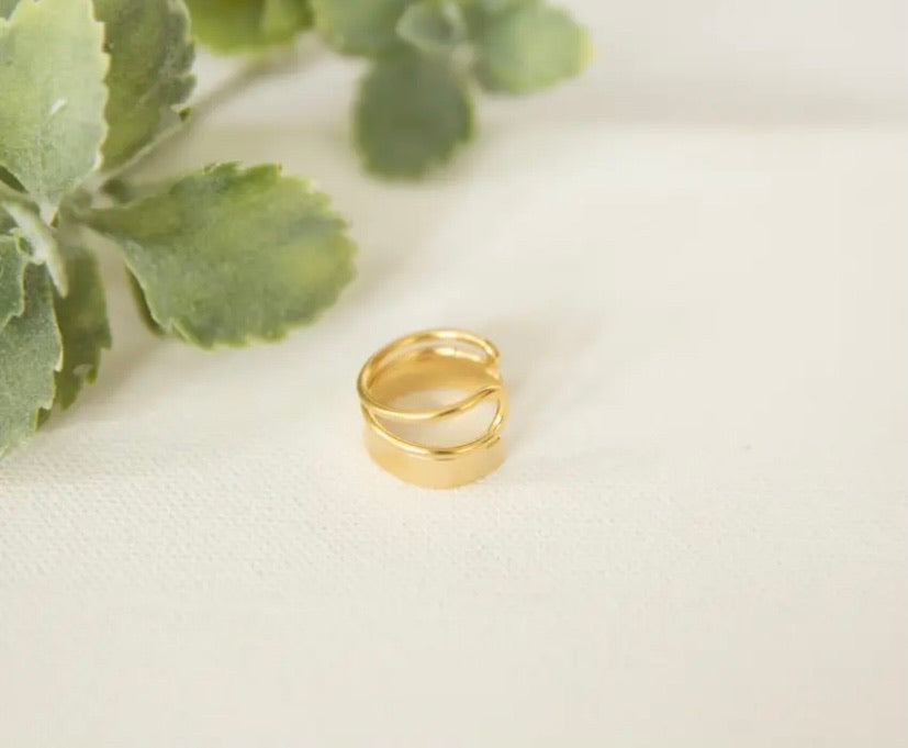 Delicate Ring In Silver Tone & Gold Tone