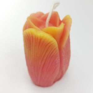 Pink tulip candle with yellow tips.