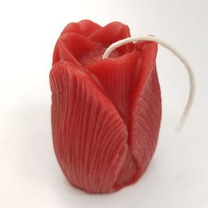red tulip candle
