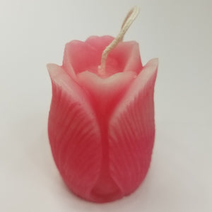 Pink tulip candles with white tips.