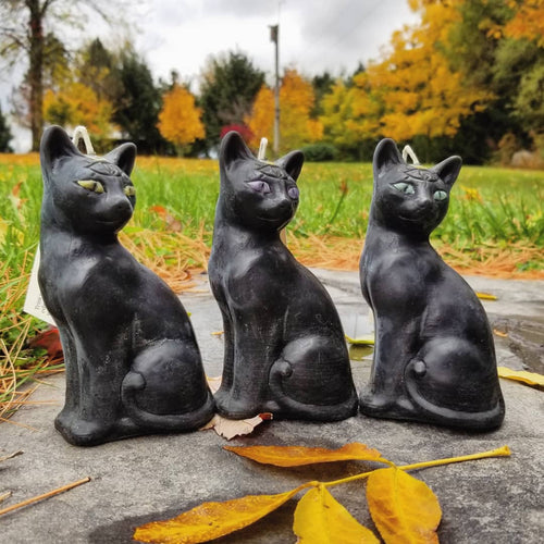 third eye cat candles with fall leaves