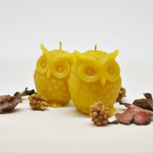 Wise Owl Votives