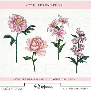 Collections, Full Bloom Clip Art Collection - TWG Designs