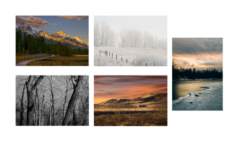 Note Card Set - Landscapes