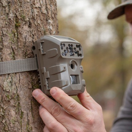 7 Best Moultrie Game Cameras