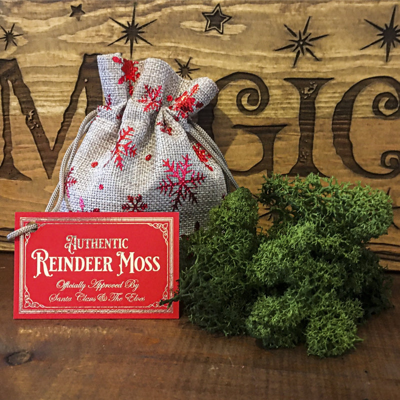 Authentic Reindeer Moss / Food For Christmas Eve
