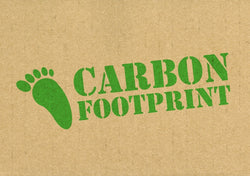 How Can I Reduce My Carbon Footprint?