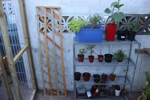 trellis made from scrap wood