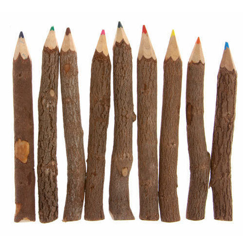 Twig Pencil Crayons (10) - Carved Culture