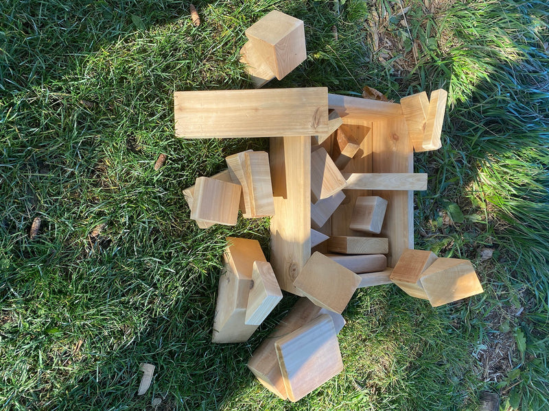 Blocks in a Box (25 Pieces)
