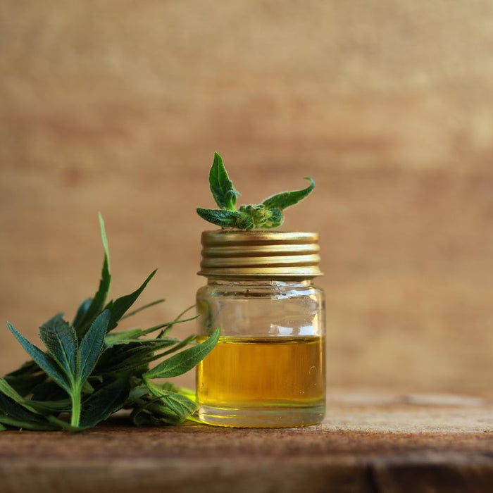 CBD 101: What is CBD? - And everything else you've always wanted to know.