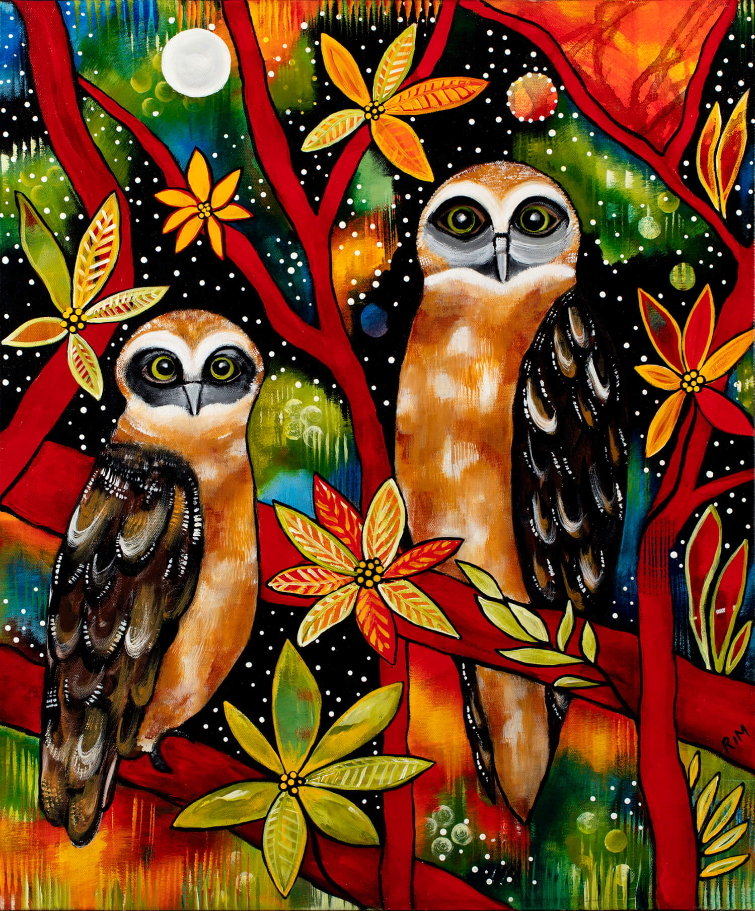 The Boobook Brothers (The Boobook Owls)