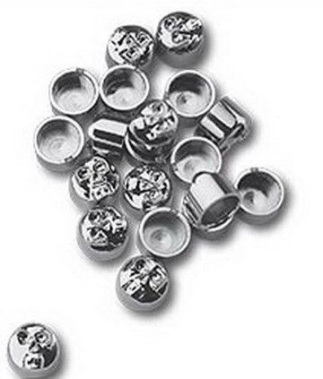 "Custom Chrome CHROME SKULL Covers for 5/16"" Round Allen Bolts 10 Pieces # 66031"