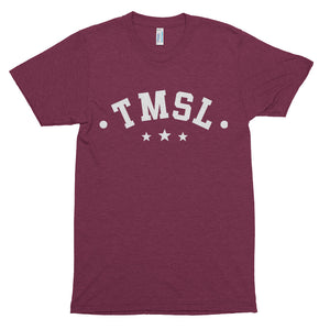TMSL Thurgood Marshall School of Law Premium Unisex Triblend Short Sleeve T-shirt - We Wear Our HBCUs