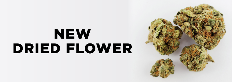 New Dried Flower