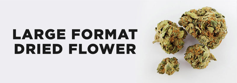 Large Format Dried Flower