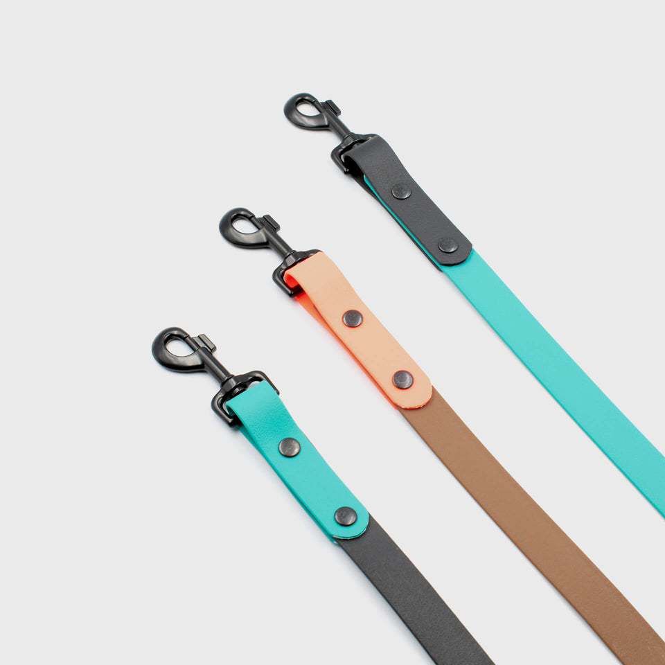 Meet our New Leashes Collection