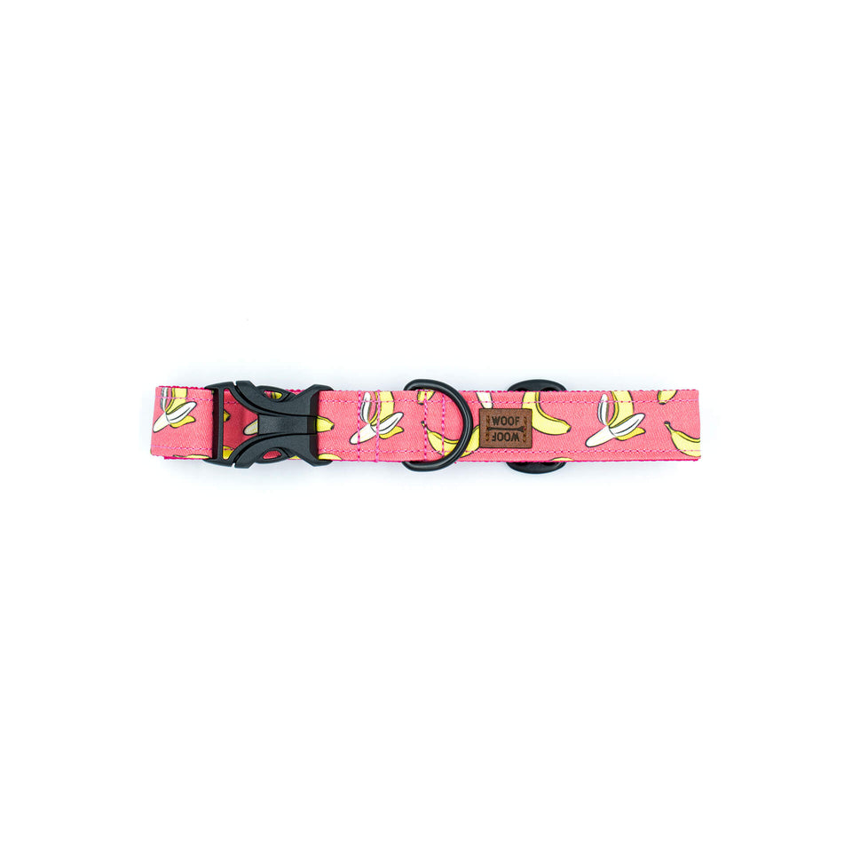the woof woof bananas dog collar