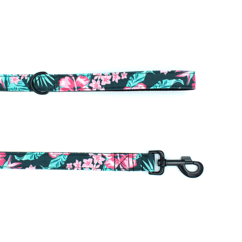 the woofwoof tropical flower dog leash