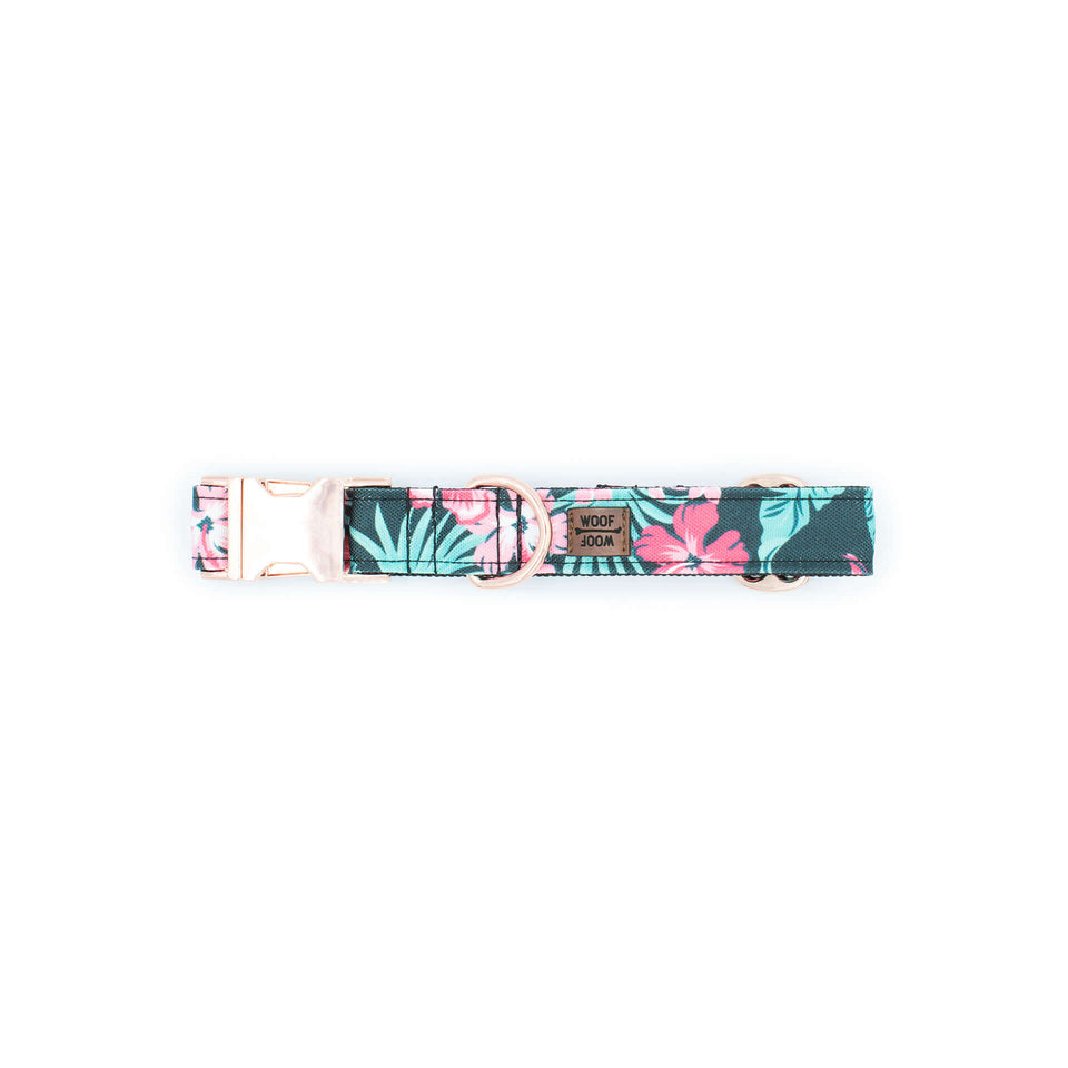 the woofwoof tropical flower dog collar