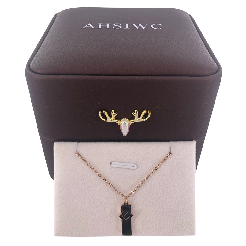 AHSIWC Gilded Stainless Titanium Steel Necklace Jewelry