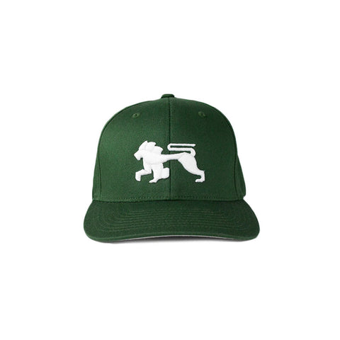 Green White.Lions Ballcap