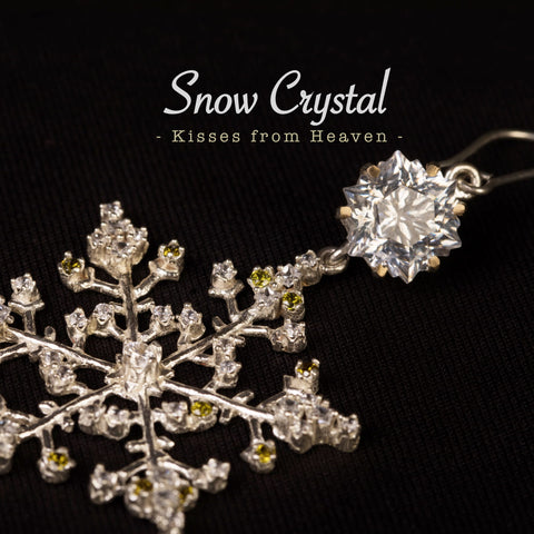 Snowflakes Christmas Snow Crystal Collection