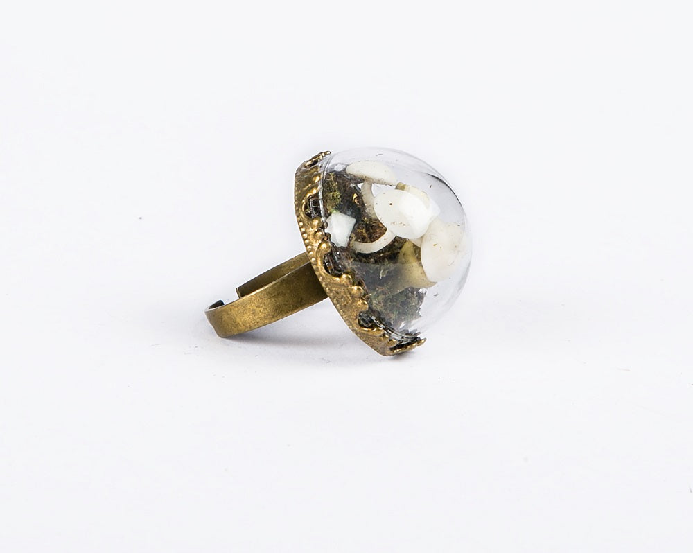 Dome shaped glass ring
