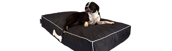 Epona Co Pet Loungers