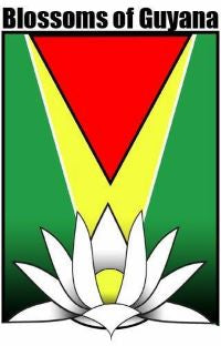 Blossoms of Guyana logo green, yellow and red colors with white flower at the bottom